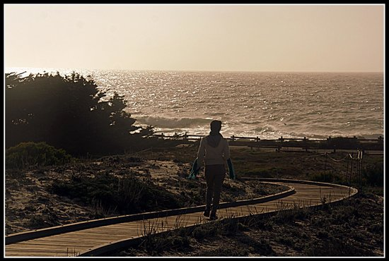 Asilomar Conference Grounds: Asilomar- Ratheesh Pulickal Photography