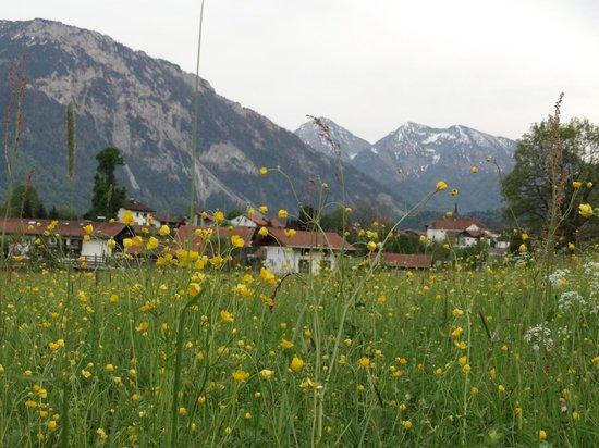Traunbachhäusl: Ruhpolding, un bello lugar para visitar