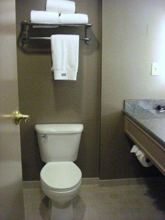 Westin Savannah Harbor Golf Resort & Spa: Bathroom