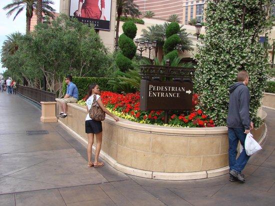 Sidewalks and Walkways - Pedestrian - PBIC