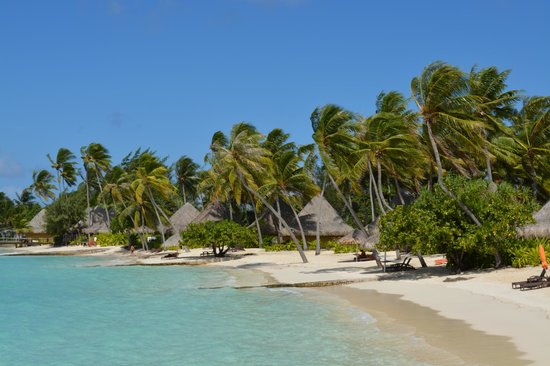 InterContinental Bora Bora Le Moana Resort: Beach