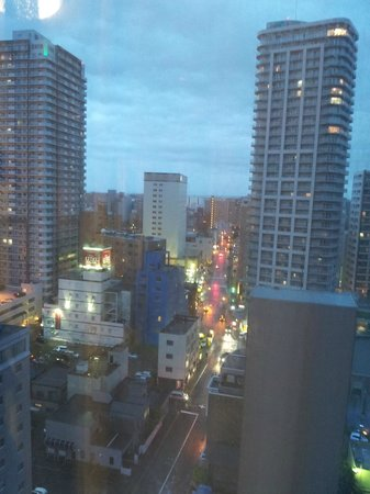 Sapporo Excel Hotel Tokyu : View from room