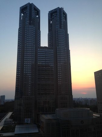 Keio Plaza Hotel Tokyo: Sunset from my room