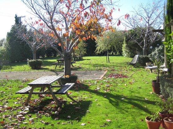Pinot Villas: Garden area