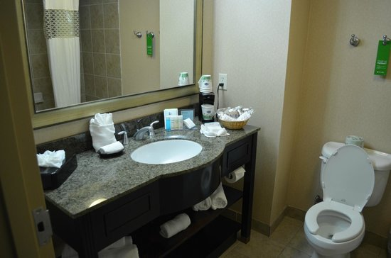 Hampton Inn & Suites Houston-Bush Intercontinental Airport : Bathroom