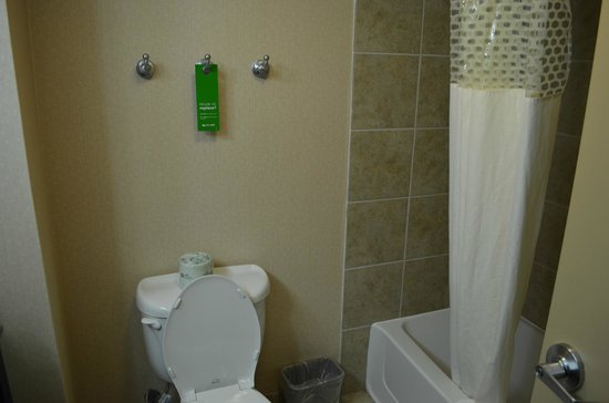 Hampton Inn & Suites Houston-Bush Intercontinental Airport : Shower area