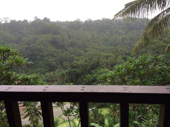 Villa Indah Ubud: The amazing view from our room!