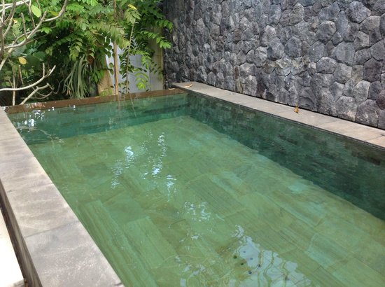 The Purist Villas and Spa: Pool in Bamboo Villa