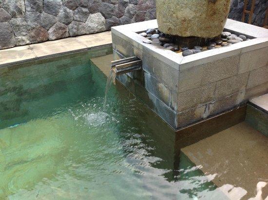 The Purist Villas and Spa: Pool in Bamboo Villa