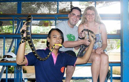 Phuket Cobra Show and Snake Farm: Phuket Snake show 9