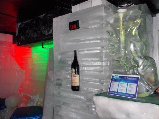 Glaciarium: Bar de hielo