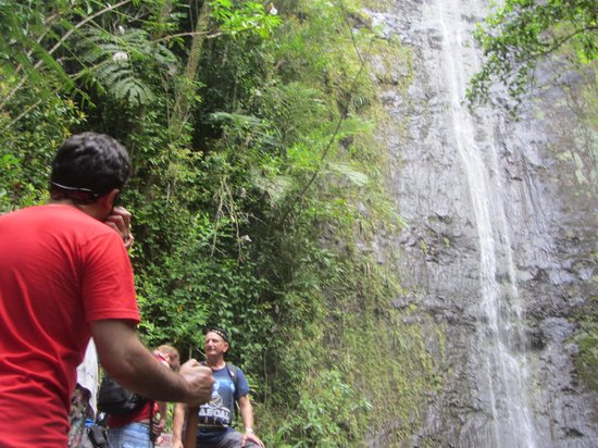 Manoa Falls: until i reach the falls