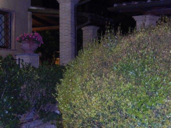 Hotel Santa Maria : Hotel grounds