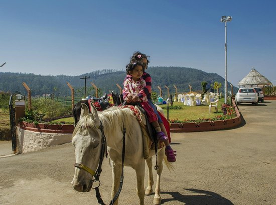 Delightz Inn Resorts: Horse riding