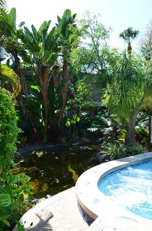 Best Western Naples Inn & Suites: Giardino del Best Western Inn Naples