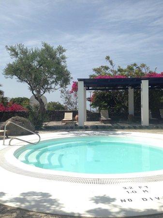 Vedema, a Luxury Collection Resort, Santorini: Jacuzzi
