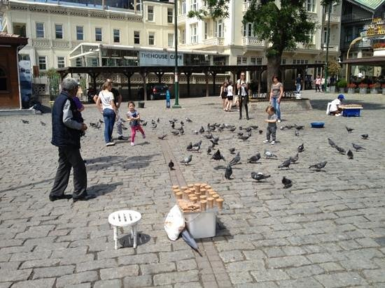 Ortakoy : Feeding the pigeons became a rituel in the centre of this area