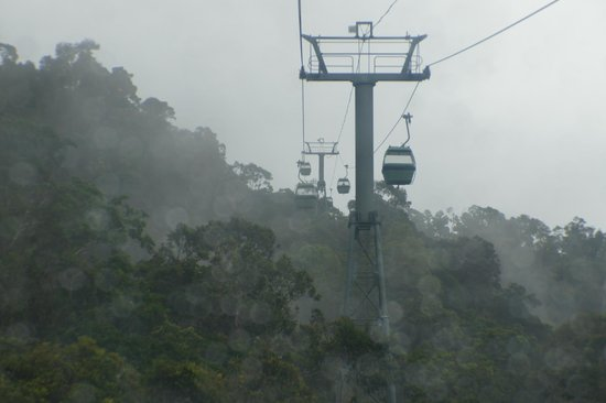 Skyrail Rainforest Cableway: Up above the canopy in the clouds