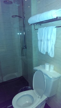 Traditional View Hotel : Shower