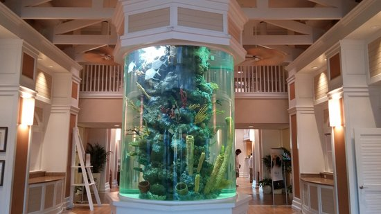 DoubleTree by Hilton Hotel Grand Key Resort - Key West: Aquarium in lobby