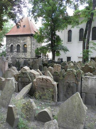 Jewish Museum in Prague : Museo ebreo (Zidovske muzeum)