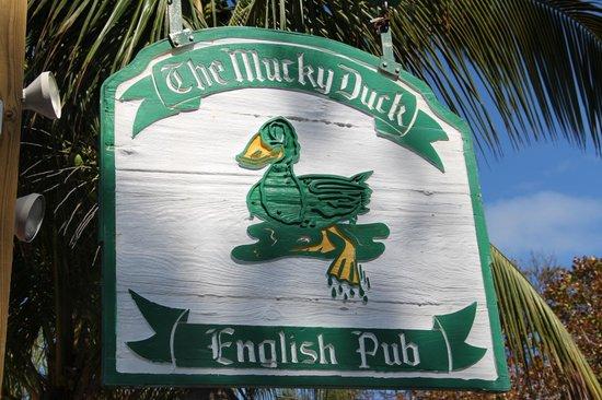 The Mucky Duck: :-)