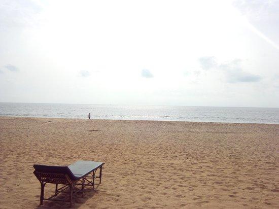 Agonda Beach: Beach