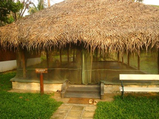 Coconut Lagoon: Yoga Room