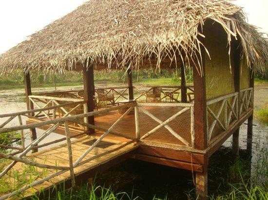 Coconut Lagoon: In the Field