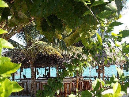 Promised Land Lodge : beach bar
