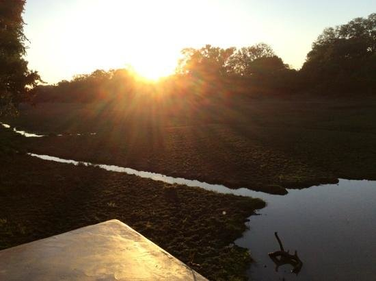 Mfuwe Lodge - The Bushcamp Company: View from the pool area, early morning