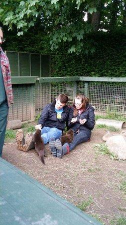 Buckfast Butterfly Farm and Dartmoor Otter Sanctuary: Best day!!