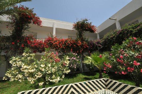 Seabel Rym Beach : Patio accès chambres