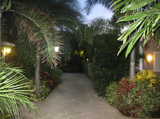 Trupial Inn: green area