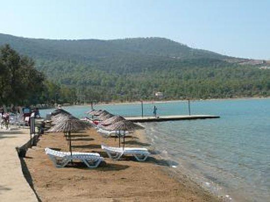 Akbuk, Turkiet: Liberte Bar Beach