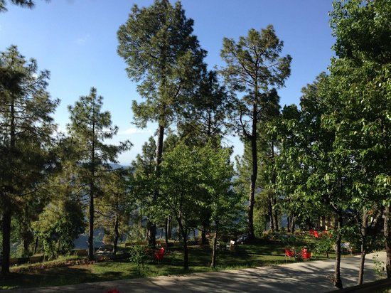 Arcadian Blue Pines Resort - Murree: View from our suite