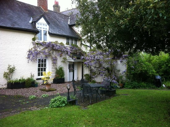 Plas Efenechtyd Cottage B&B: Wisteria in full bloom