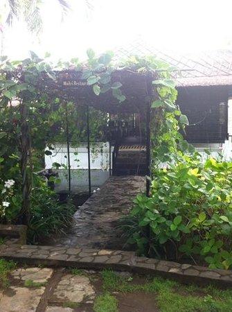 Zen Resort Bali: fresh good food every day
