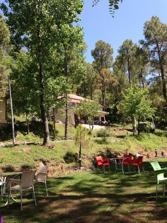 Arcadian Blue Pines Resort - Murree: One of the lodges from a distance