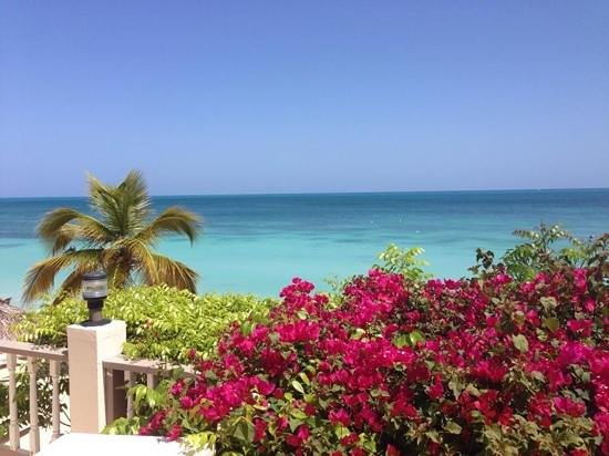 Blue Waters Antigua: Blue Waters!
