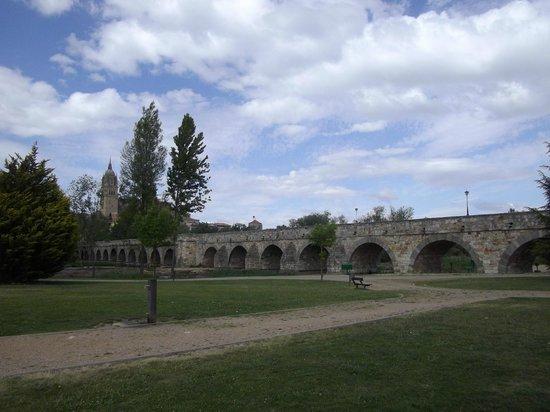 Vincci Ciudad de Salamanca: puente romano