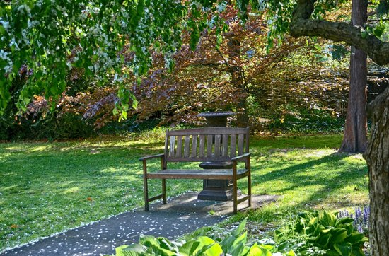 Delano Homestead Bed and Breakfast : Garten