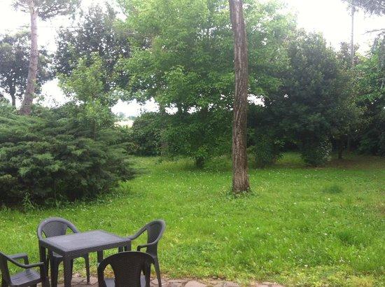 Airone Pisa Park Hotel : Jardin