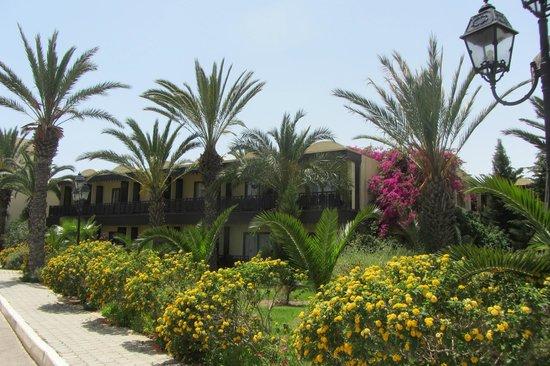 Hotel Paradis Palace: Территория.