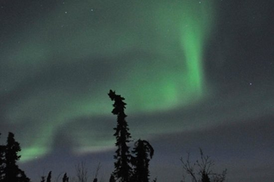 Aurora Borealis Lodge: Aurora 3/2014