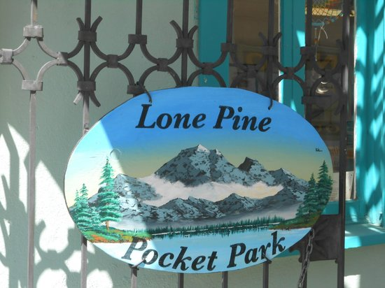 Lone Pine Creek: lone pine