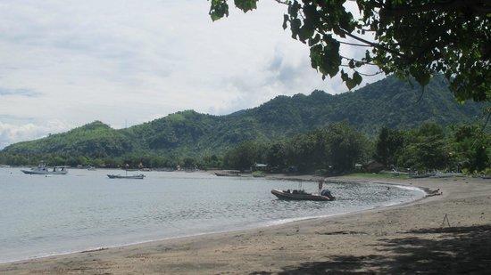 Taman Sari Bali Resort & Spa: Pemuteran Bay