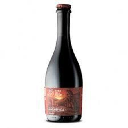 Break Out Pub: Magnifica (Alc 5,00%) Apa- Birra Dell'Eremo