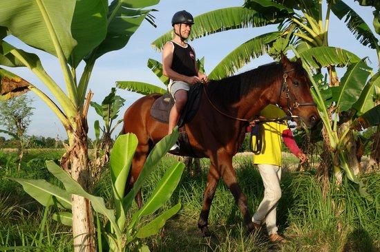 Bali Horse Adventure : Mein Mann hat es sichtlich genossen