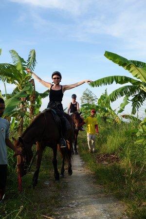 Bali Horse Adventure : Und ich habe mich auch getraut..... loszulassen